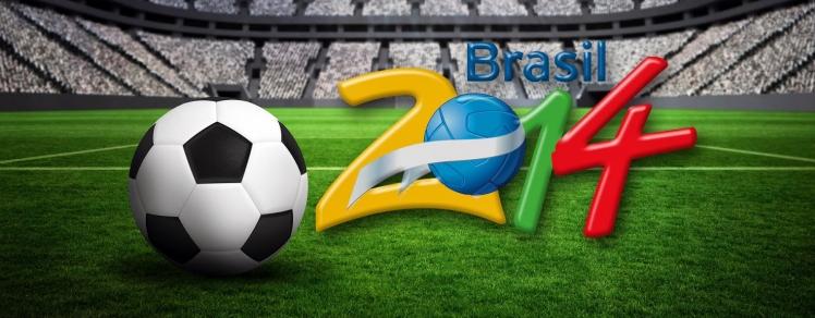 WK 2014 Hoesjes